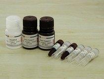 进口试剂阿糖胞苷Sigma C1768