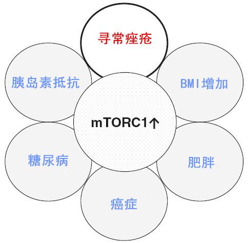 图 1_副本.jpg