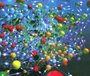 人神经星形胶质细胞