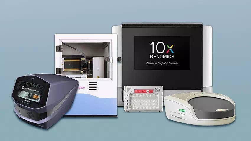 单细胞测序实验服务scSeq