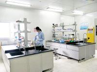 稳定转染(永久转染)细胞株构建