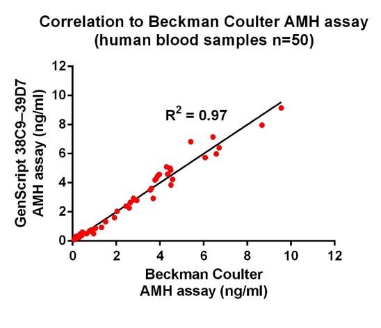 AMH (39D7), mAb, Mouse