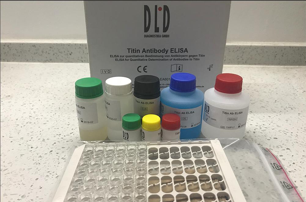 肌联蛋白(Titin)抗体检测试剂盒