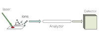 MALDI-TOF/TOF蛋白鉴定实验