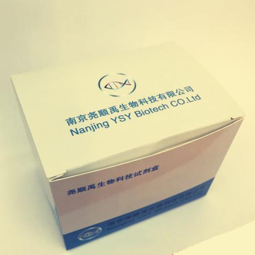 PCR一步法模板制备试剂盒