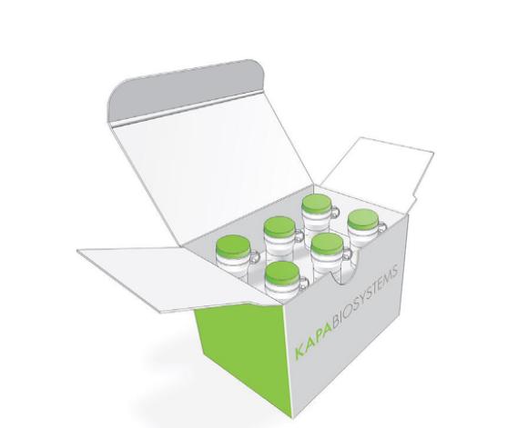 KAPA DNA  HTP文库构建试剂盒 (96个反应)