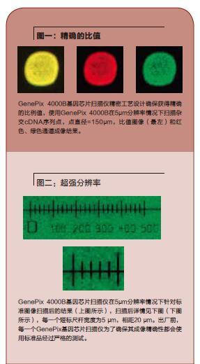 杏耀娱乐芯片扫描仪