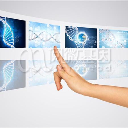肿瘤个体化化疗用药基因检测