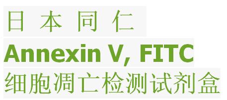 Annexin V-FITC/PI凋亡检测试剂盒