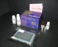 猪PAF elisa检测试剂盒