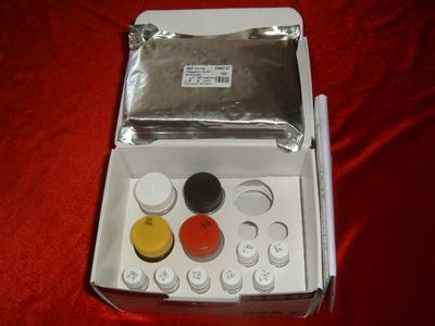 小鼠TNFsR-Ⅱ elisa检测试剂盒