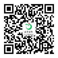 LLC1[LL/2];小鼠Lewis肺癌细胞