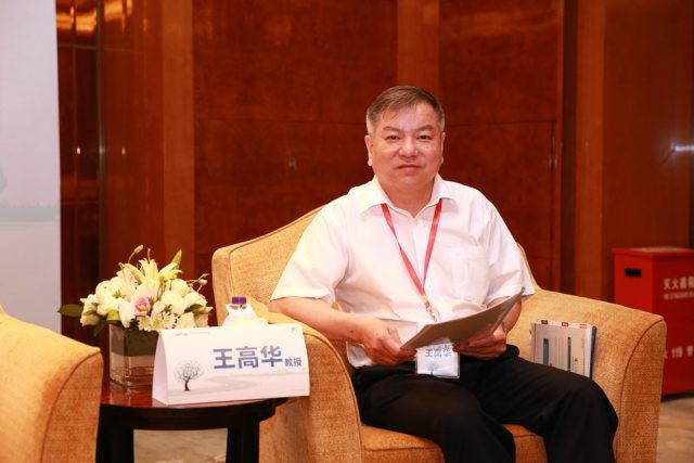 王高华教授.JPG