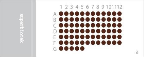 食管癌生存期组织芯片(ESC77)