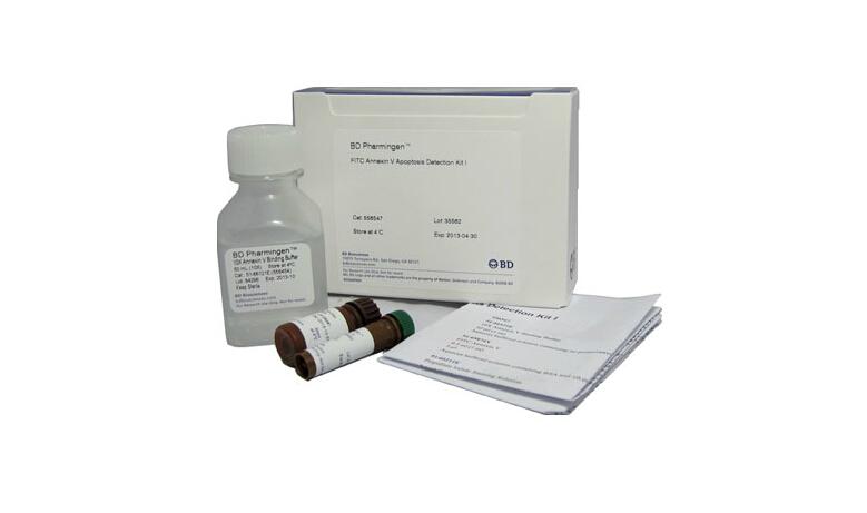 BD 556547 AnnexinV-FITC/PI细胞凋亡双染试剂盒