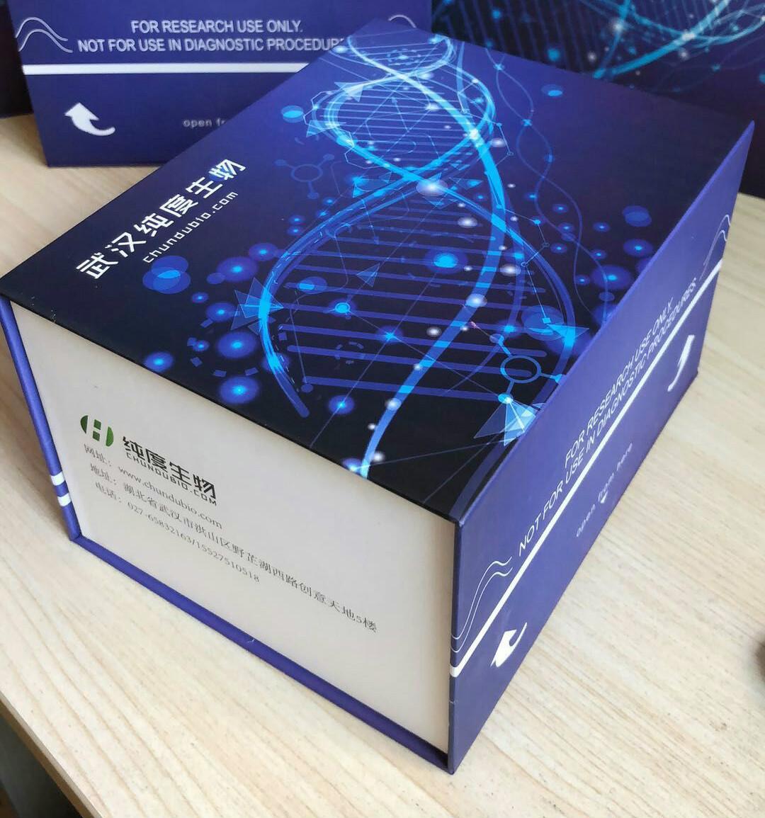 兔干细胞因子(SCF)酶联免疫试剂盒