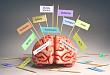 BMJ 子刊:痴呆可以预测吗?这四大法宝请收好