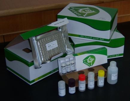 猴血栓调节素(THBD)ELISA试剂盒