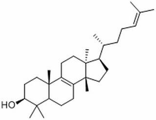 大戟二烯醇 CAS:514-47-6