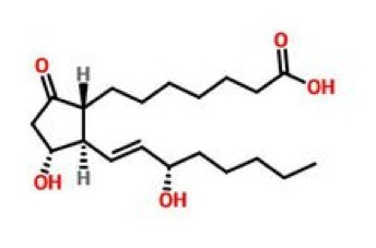 前列腺素.png