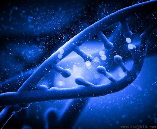 磷酸化蛋白组学实验