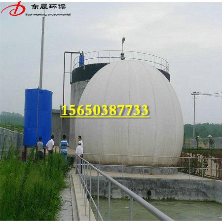 300立方双膜气柜 沼气膜式储气柜200立方