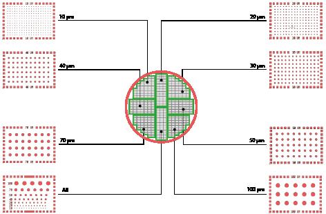 Micropatterned Dish 微圖案芯片
