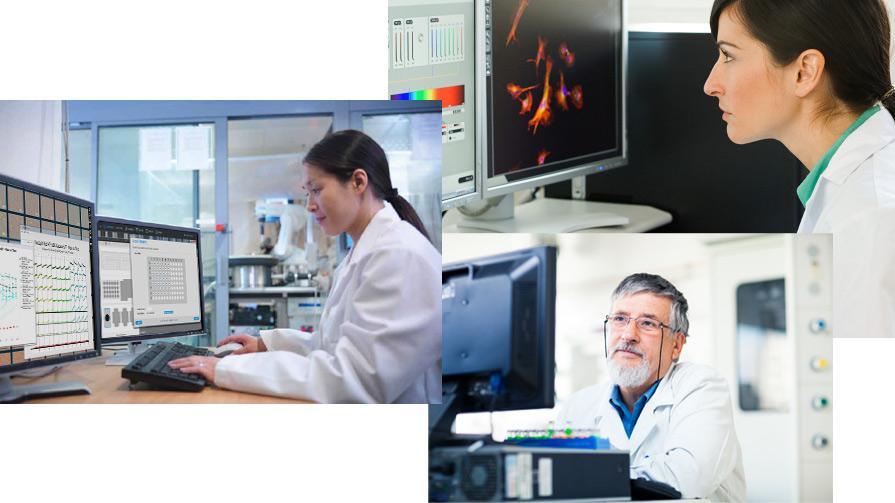 Incucyte 长时间动态细胞成像及分析系统