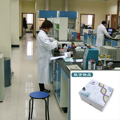大鼠素样细胞因子1(CLCF1)ELISA试剂盒 推荐惠供
