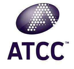 ATCC CRL-2390(FL83B)原代供应