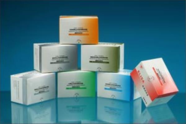 鸡可sICAM-1检测试剂盒