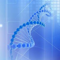 miRNA靶基因的预测与验证