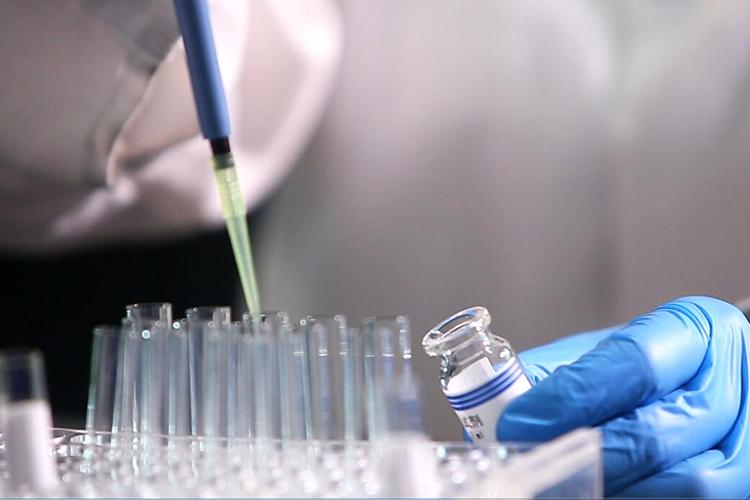 细菌内毒素试验方法建立