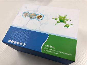 牛赭曲霉毒素(OT)ELISA试剂盒