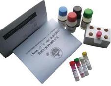 CCCP (50 mM) 细胞凋亡诱导剂