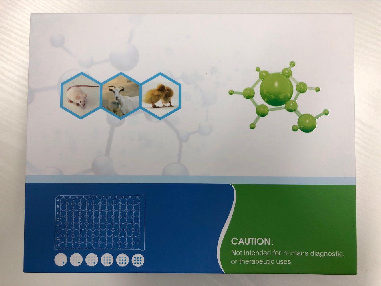 人Y一谷氨酞转肤酶(γ-GTP)ELISA试剂盒