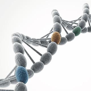 GIST MASTR 胃肠道间质瘤二代测序基因组合