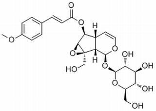 6-O-p-Methoxycinnamoylcatalpol HPLC≥98%