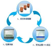 血清无机磷检测试剂盒