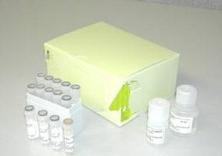 his标签蛋白纯化试剂盒