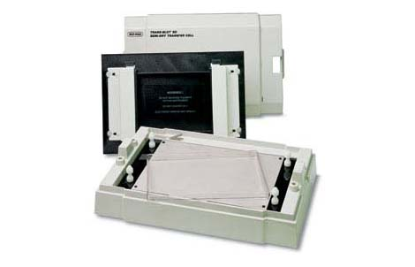 Trans-Blot SD Semi-Dry Electrophoretic Transfer Cell 半干转系统