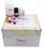 植物维生素B1检测试剂盒