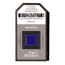 Affymetrix SNP Array 6.0