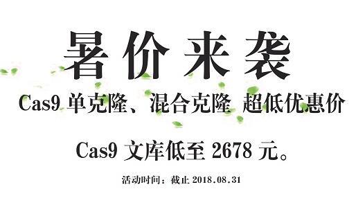 CRISPR Cas9文库