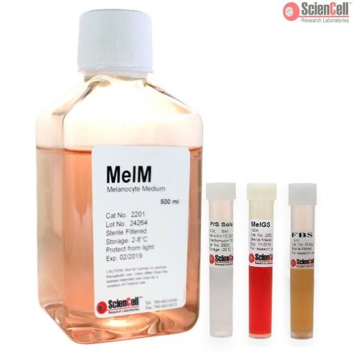 ScienCell黑色素细胞培养基MelM(货号2201)