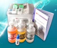高尔基染色试剂盒(Prekit)