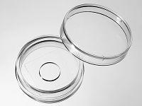 29mm 玻底皿(玻底培养皿,激光共聚焦专用培养皿)