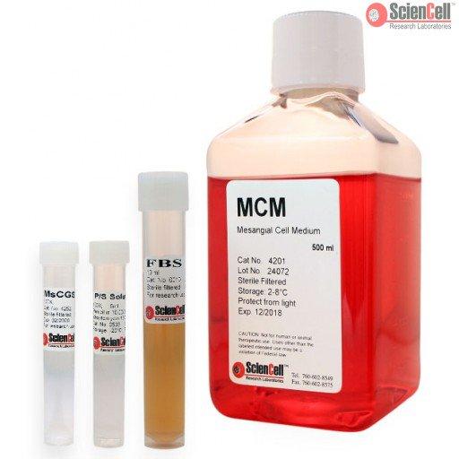 ScienCell 肾系膜细胞培养基MCM(货号4201)