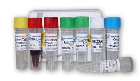 乳酸(LD)检测试剂盒(微板法)