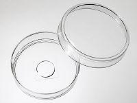 60mm 玻底皿(玻底培养皿,激光共聚焦专用培养皿)